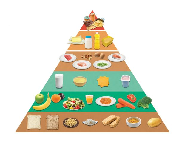 dinh dưỡng suất ăn trường học