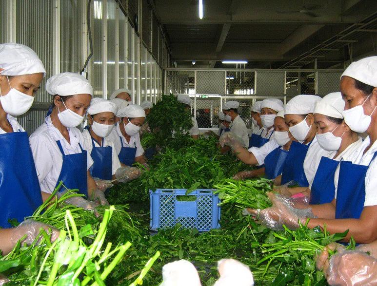 thách thức của dịch vụ suất ăn công nghiệp